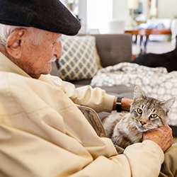 Sweet elderly man wearing a cap and holding a kitten